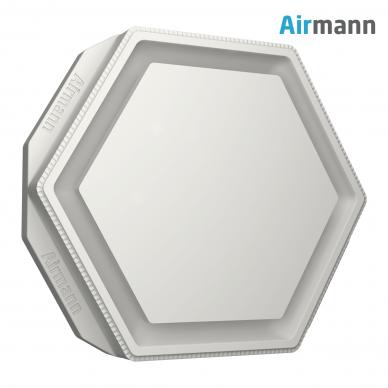 Šešiakampis gipsinis priglaistomas oro difuzorius AIRMANN Hexa 2